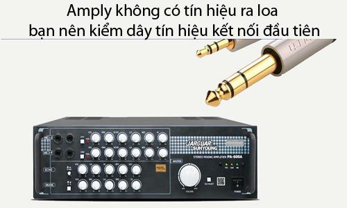 Amply không có tín hiệu ra loa bạn nên kiểm dây tín hiệu kết nối đầu tiên
